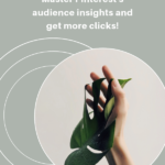 Pinterest Audience Insights 1 150x150 - Pinterest Pin Ids