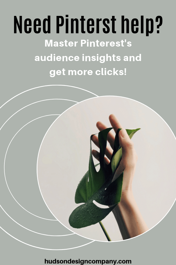 Pinterest Audience Insights 1 - Winning Tactics For Pinterest Audience Insights