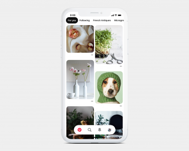 P100 trends in home feed 384x307 - Pinning to Pinterest